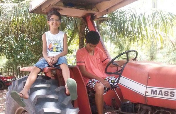 Kinder auf einem Traktor - auf der Farm lernen die Kinder jeden Tag Neues!
